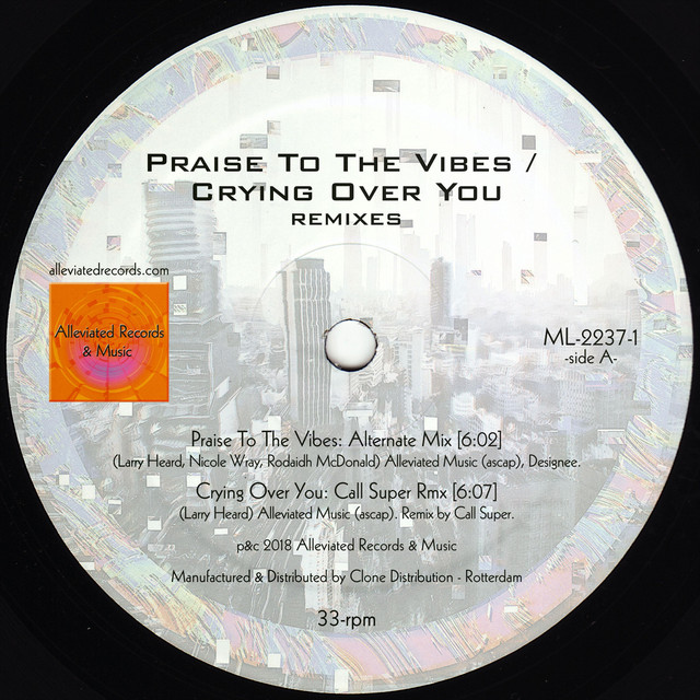 Praise to the Vibes / Crying Over You (Remixes)