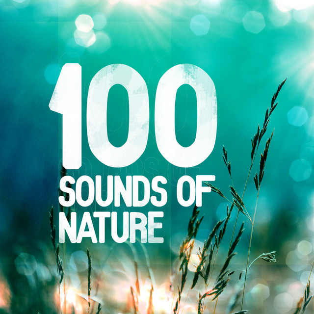 100 Sounds of Nature Albumcover