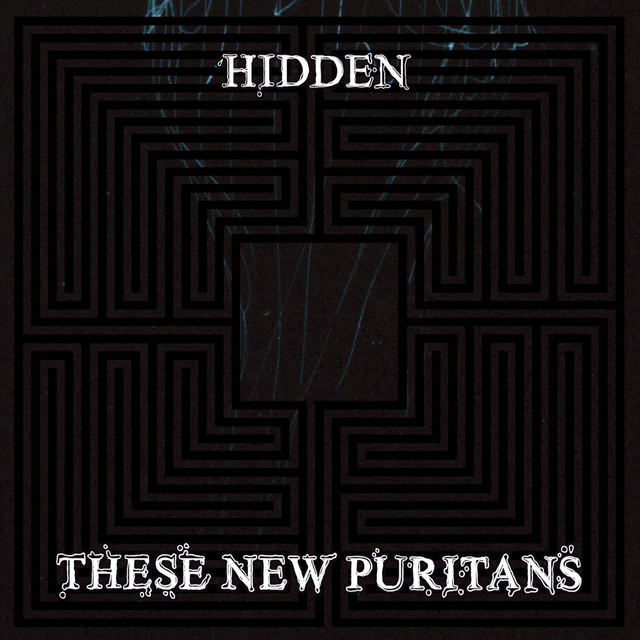 Album cover for Hidden by These New Puritans