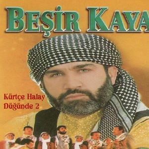 Kürtçe Halay Düğünde, Vol. 2 Albümü