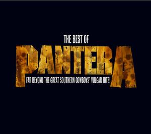 Pantera, Pantera Mouth for War cover