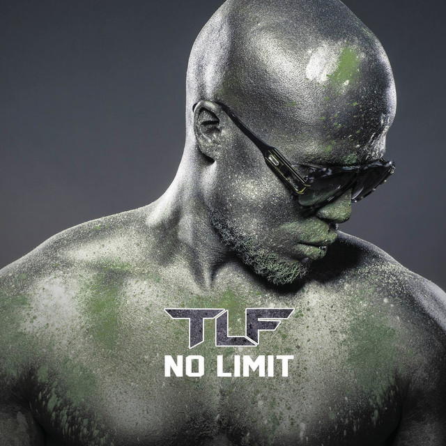 Album cover for No Limit by TLF