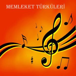 Memleket Türküleri Albümü