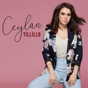 Tillillo Albümü