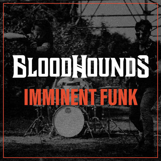 Image result for bloodhounds imminent funk