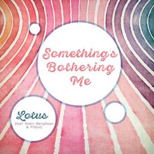 Something's Bothering Me (feat. Robin Bengtsson, Pitbull) Albümü