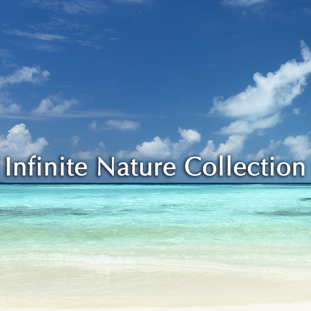 Infinite Nature Collection Albumcover