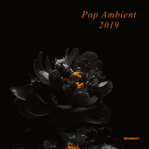 Various Artists - Pop Ambient 2019