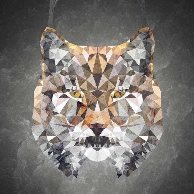 Dancing Lynx