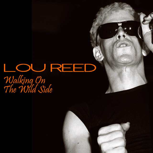 Lou Reed The Wild Side album cover