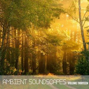 Ambient SoundScapes, Vol. 13