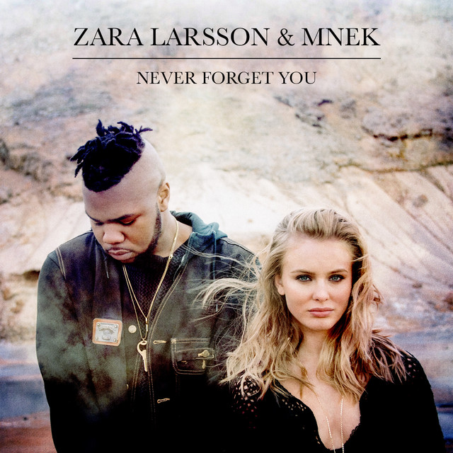 Never Forget You cover