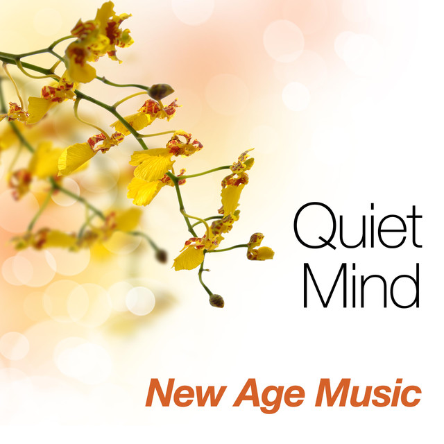 Quiet Mind: New Age Music for Tai Chi, Qigong, Reiki and Yoga for your Inner Peace with Special Sounds of Nature like Rain and Ocean Waves Albumcover
