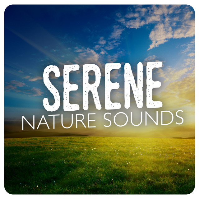 Serene Nature Sounds Albumcover