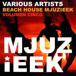 Beach House Mjuzieek, Vol. 5 Albumcover