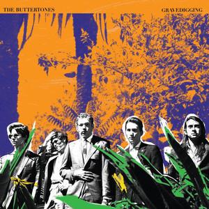 Album cover for Gravedigging by buttertones