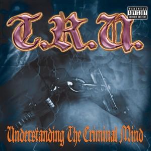 Understanding The Criminal Mind Albumcover