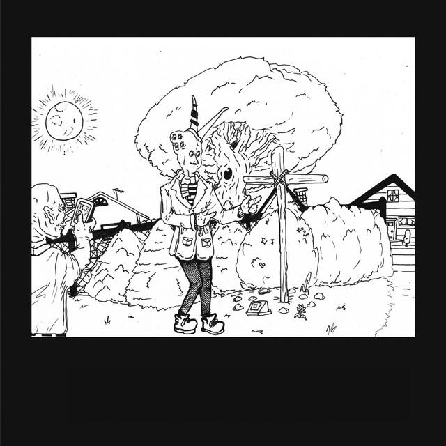 Album cover for It's the Big Joyous Celebration, Let's Stir the Honeypot by Teen Suicide