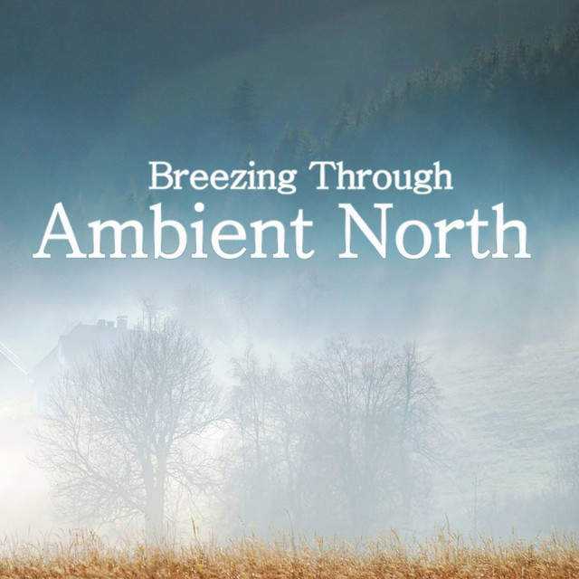 AMBIENT NORTH