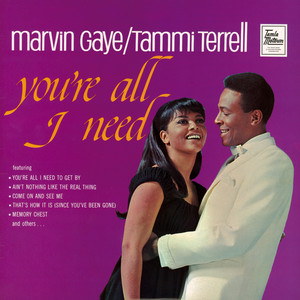 You're All I Need - Marvin Gaye