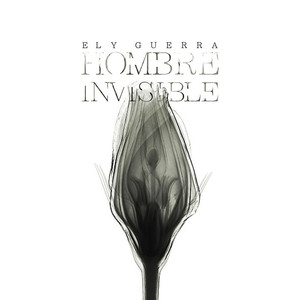 Hombre Invisible - Ely Guerra