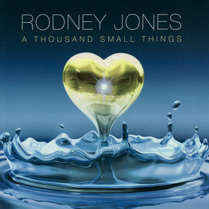 A Thousand Small Things album
