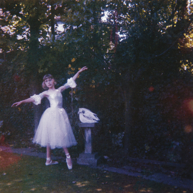 Album cover for Visions Of A Life by Wolf Alice
