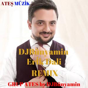 Erİk Dali 2018 (Remix) Albümü