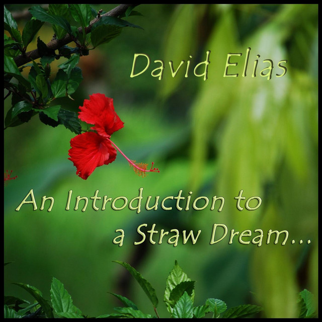 An Introduction to a Straw Dream, a song by David Elias, Chris Kee