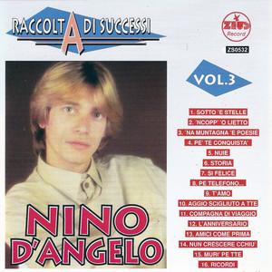 Raccolta di successi, vol. 3 (The Best of Nino D'Angelo Collection) album