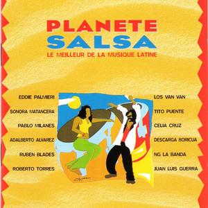 Panete Salsa: Le Meilleur de la Musique Latine - Juan Luis Guerra