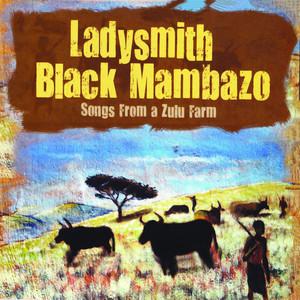 Songs from a Zulufarm album