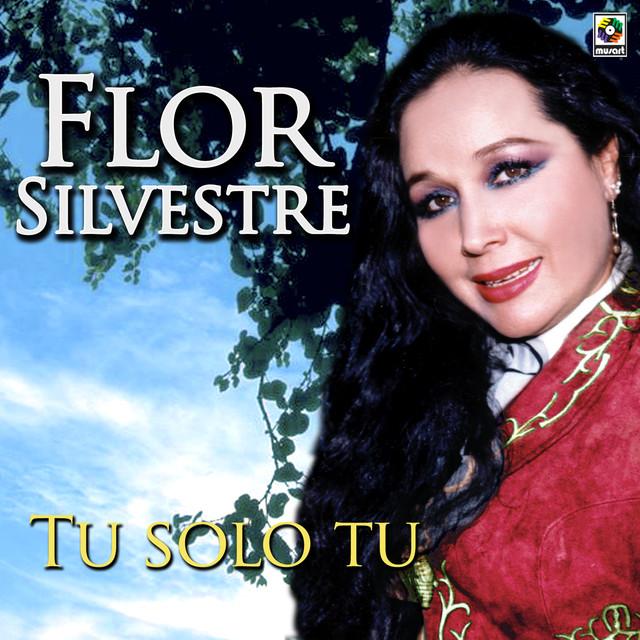 Mi amigo el viento a song by flor silvestre on spotify for Amazon canta tu alex e co
