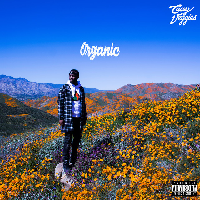 Album cover for Organic by Casey Veggies