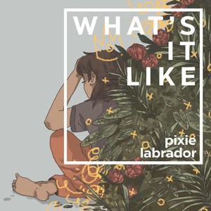 What's It Like - Pixie Labrador