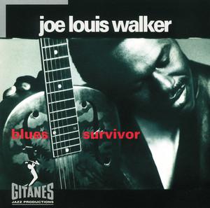 Blues Survivor album