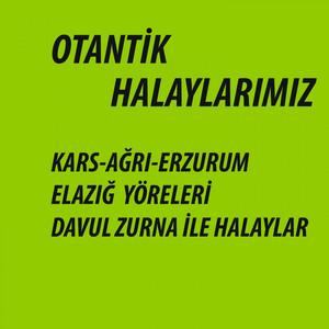Otantik Halaylarımız (Kars, Ağrı, Erzurum, Elazığ Yöreleri Davul Zurna İle Halaylar) Albümü