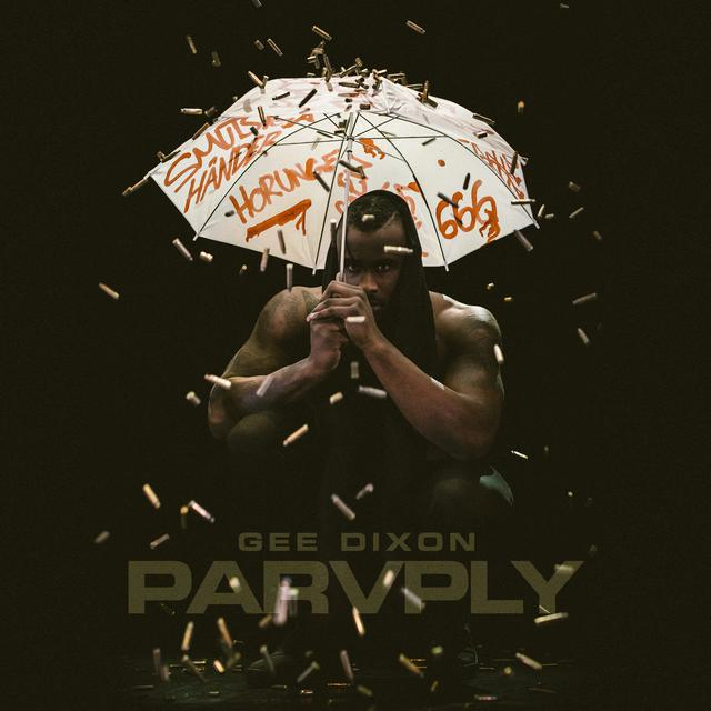 Album cover for Paraply by Gee Dixon