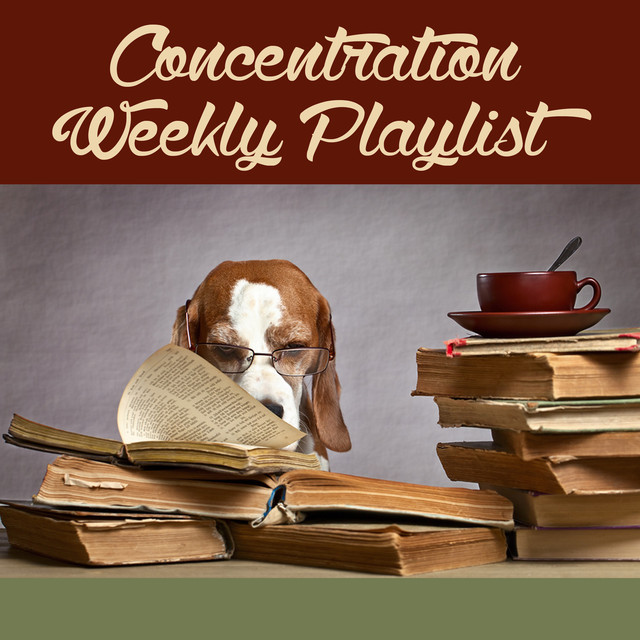 Study Music, a song by Study Concentration on Spotify