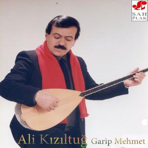Garip Mehmet Albümü
