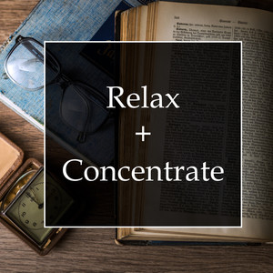 Relax & Concentrate - A Must-Listen Mix for Study, Deep Focus, Meditation and Getting in the Zone Albümü