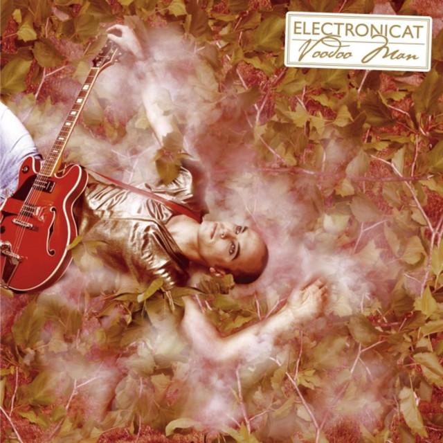 Electronicat