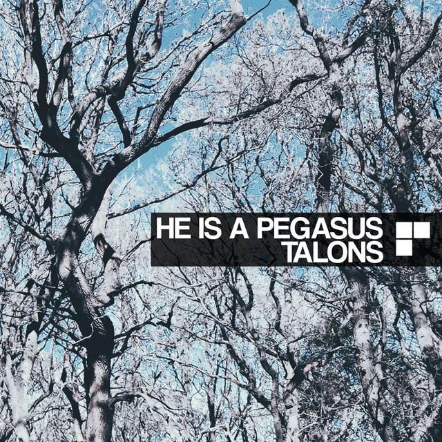 He Is A Pegasus