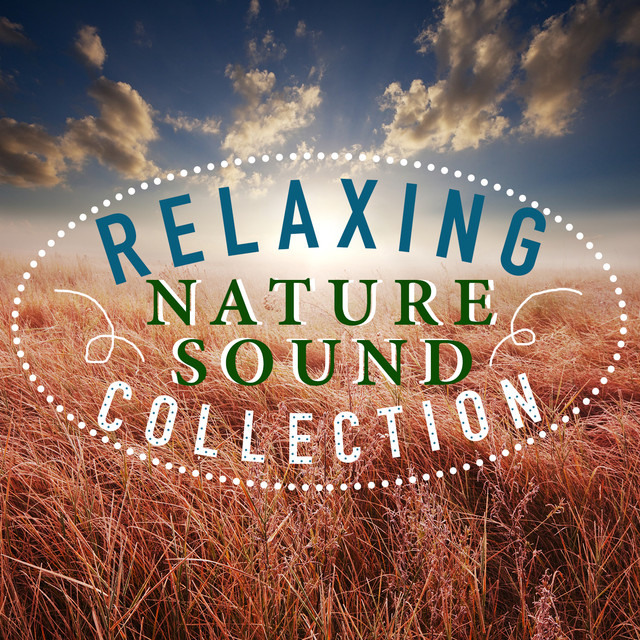 Relaxing Nature Sound Collection Albumcover