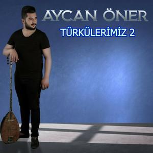Türkülerimiz, Vol. 2 Albümü