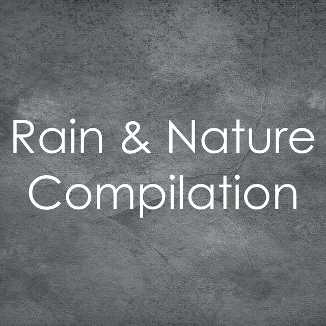 Perfect Gentle Rain, a song by Rain Sounds & Nature Sounds