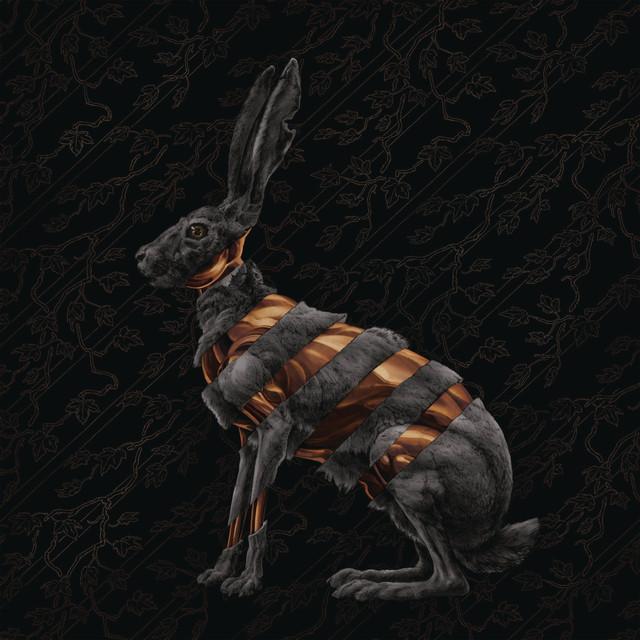 Jackrabbit (Deluxe) Albumcover