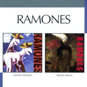 Brain Drain/Adios Amigos album