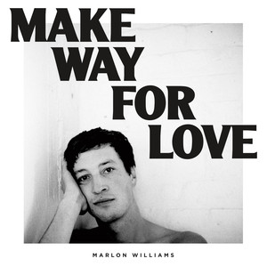 Marlon Williams I Didn't Make a Plan cover