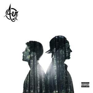 Aer - AER